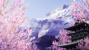 Blooming blossoms by RenatoSs