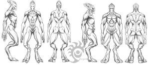 Protoss Gender Comparison by Sekhmet-SCII