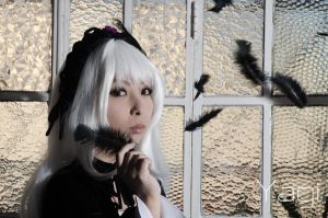 Black feathers by YagiPhotography