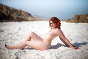 Willow at the Dead Sea by rodibest