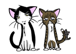 Ze Cats by SquizZ
