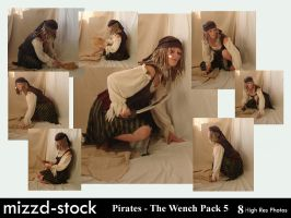 Pirates - The Wench Pack 5 by mizzd-stock