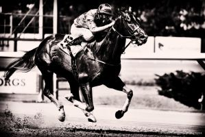 Horse Racing -5 by AndersStangl