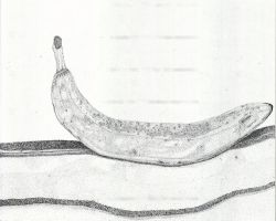 Pointillism Banana 2 by Rayleighev