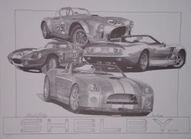 Shelby by SketchesByChris