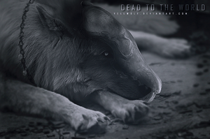 Dead to the World by Yellwolf