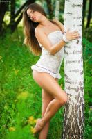 Forest Fairy 2 by platen