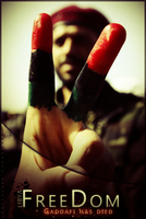 LIBYA-FREEDOM by abo-amoud