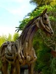 Life size stallion sculpture in driftwood by ghoff24
