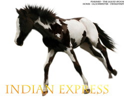 Indian Expresss by Theliquidspoon
