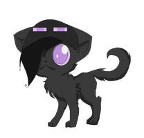 ENDERCAT!!!!! (free journal doll) by catsp00ky