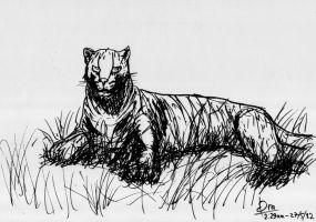 Sketch ink black leopard by Draconica5
