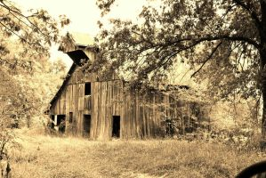 Old barn by sweetz76