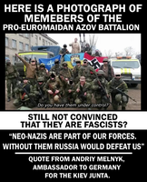 Euromaidan's True Colours by Party9999999