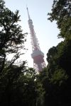 Tokyo Tower within trees by JAFNOVA