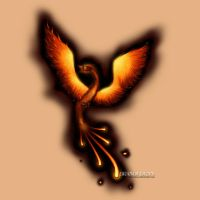 Phoenix Tattoo Design by bdunn1342