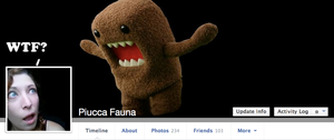 Facebook photo and Cover by Piucca