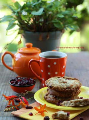 Chewy Oatmeal Cranberry Cookies by theresahelmer