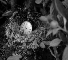 The Fragility Of Time by Forestina-Fotos