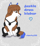 justin bieber new wolf style by charky123