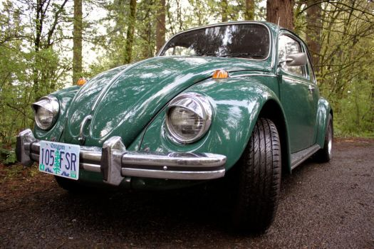 Digory's heart in a new Bug by Marcusstratus