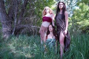 Faeries 13 by Trisa-Sxy-Stock