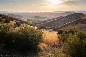 Downhill by isotophoto