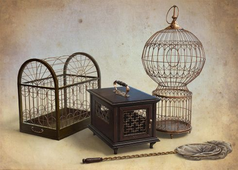 Cages by AnekaShu