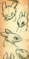 Toothless Sketch Dump by Kitty-Ham