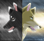.:Life Isn't About Waiting For The Storm To Pass:. by MorningAfterWolf