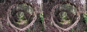 Guilbo's Landart5 Synthetic Stereoscopy Version by aegiandyad