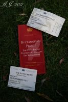 Welcome to Buckingham Palace by christiline88