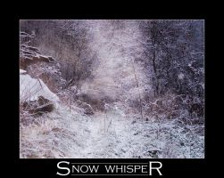 Snow Whisper by ZaluRagar