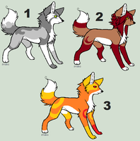 Realistic Wolf Adoptables (3) FREE by blackyball22