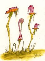 Shroomz by ViggObscure