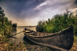Am See by wolfgangbuhr