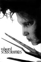Edward Scissorhands by IsabelIntangible
