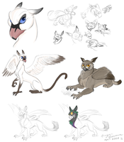 Year-old griffin sketchdump by epesi