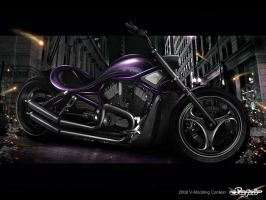 Harley Davidson Night Rod by Saporita