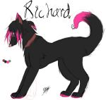 Richard Ref by phoenixity