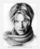 David Bowie by traume