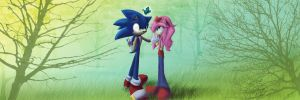 Sonic and Amy: I Love You by Called1-for-Jesus