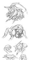Cyberstacean Sketches by thomastapir