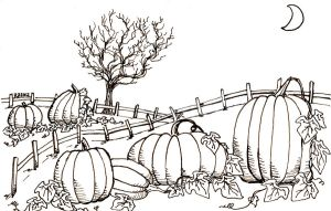Pumpkin Patch by NycterisA