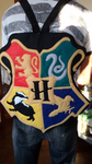 Handmade Harry Potter Hogwarts Houses Backpack by RbitencourtUSA
