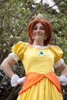 Princess Daisy by Holleit
