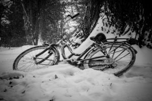 Abandoned Bycicle by gperkins10