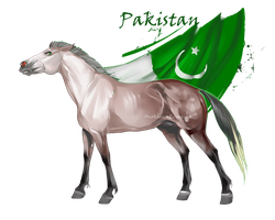 Horse Hetalia:  Pakistan by Moon-illusion