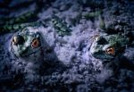 Two Frogs by melissa3339