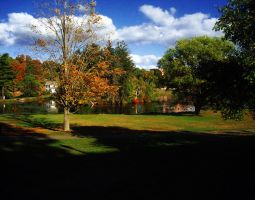 Fall at UCONN by ParadiseLost589